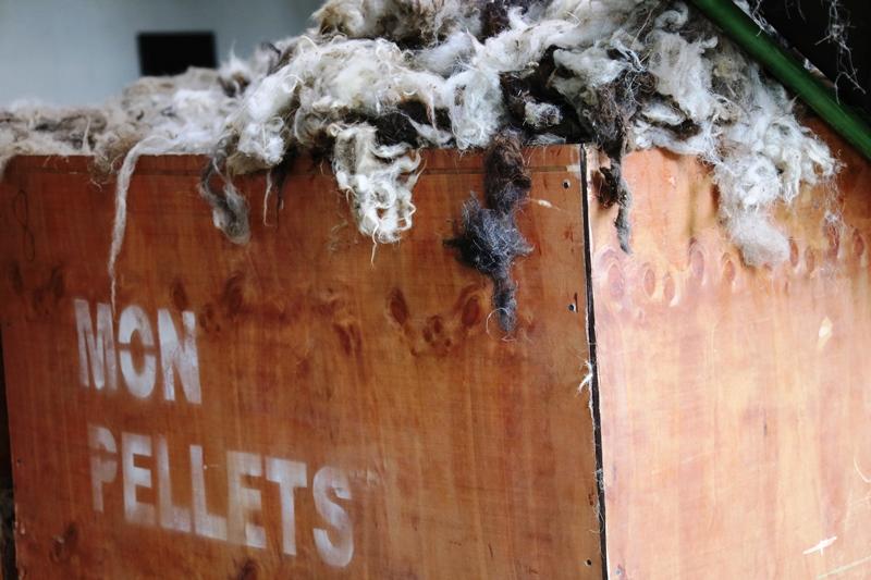 Хонины ноосоор 100 хувь эко бордоо үйлдвэрлэж байна